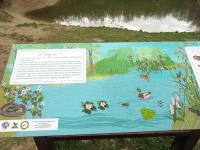 Jági-tó